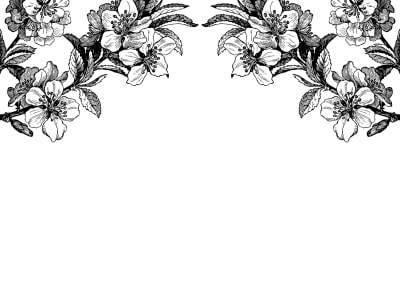 Tapetl R12654 Springtime Double, black & white bild 1 från Rebel Walls