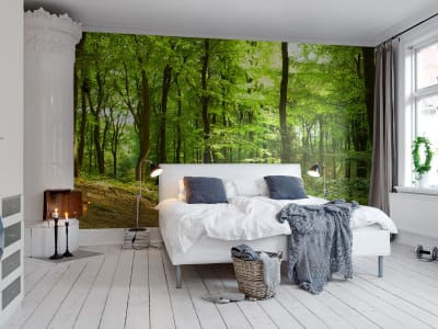 Mural de pared R10141 Forest imagen 1 por Rebel Walls