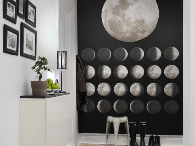 Mural de pared R11141 Moon imagen 1 por Rebel Walls