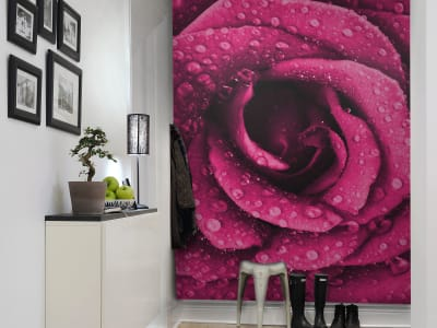 Tapete R11611 Rose Bild 1 von Rebel Walls