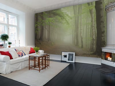 Mural de pared R12471 Forest Path imagen 1 por Rebel Walls