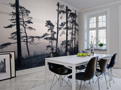 Mural de pared R13021 Old Pine Trees imagen 1 por Rebel Walls