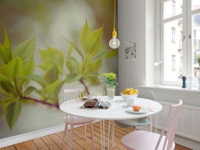 Mural de pared R13661 Green Leaves imagen 1 por Rebel Walls