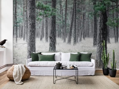 Mural de pared R13711 Pine Forest imagen 1 por Rebel Walls
