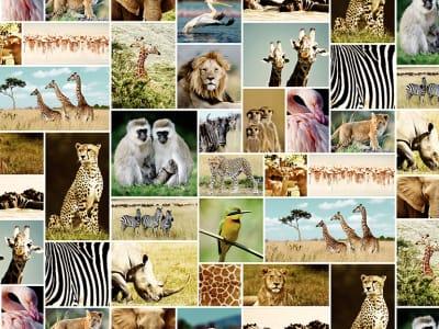 Décor Mural R11561 Africa image 1 par Rebel Walls