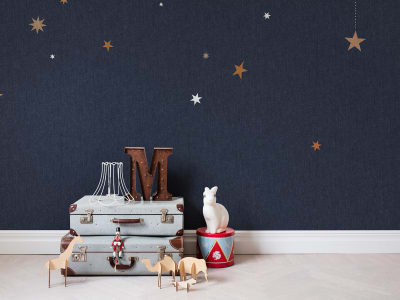 Murale R14571 Stargazing ​​immagine 1 di Rebel Walls
