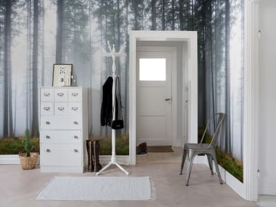 Mural de pared R15201 Forest Glade imagen 1 por Rebel Walls