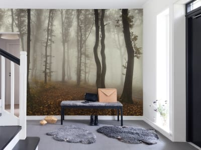 Wall Mural R15281 Timberland image 1 by Rebel Walls