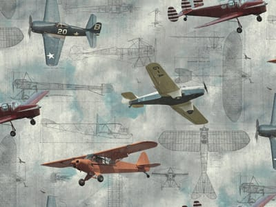 Wall Mural R15211 Aero Show image 1 by Rebel Walls