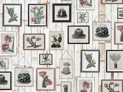 ミューラル壁紙 R15322 Cactus Wall Art, Faded 画像 1 by Rebel Walls