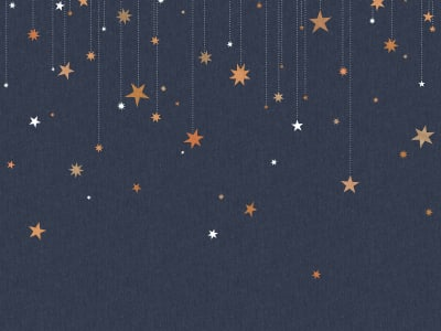 Tapet R14571 Stargazing bilde 1 av Rebel Walls