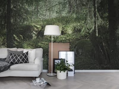 Mural de pared R16531 Virgin Forest imagen 1 por Rebel Walls