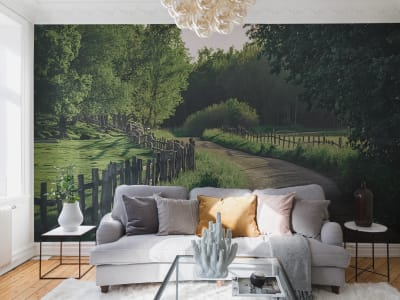 Wall Mural R16541 Wooden Fence image 1 by Rebel Walls