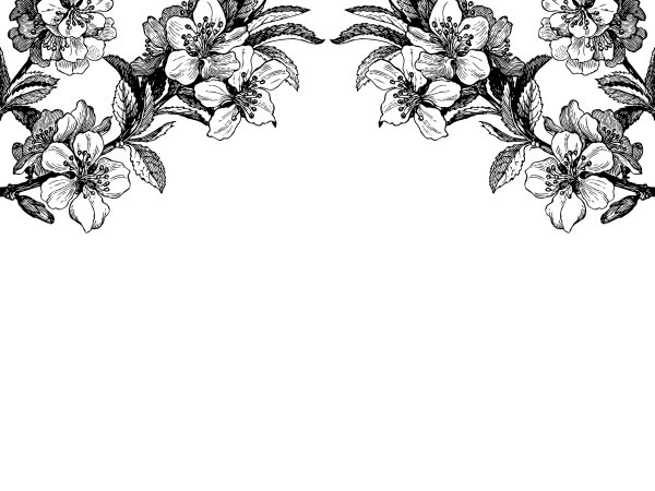 Wall Mural R12654 Springtime Double, black & white image 1 by Rebel Walls