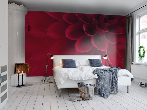 Wall Mural R10601 Dahlia image 1 by Rebel Walls