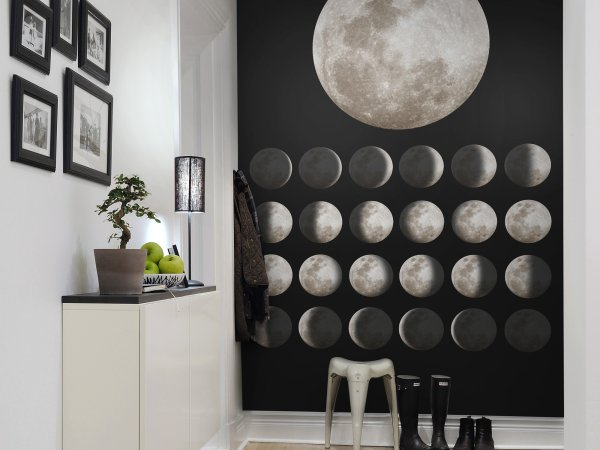 Wall Mural R11141 Moon image 1 by Rebel Walls