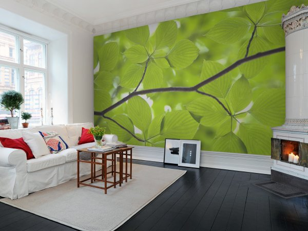 Wall Mural R11181 Leaves image 1 by Rebel Walls