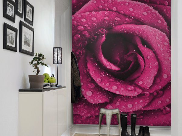 Wall Mural R11611 Rose image 1 by Rebel Walls