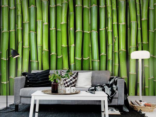 Tapete R11821 Bamboo Bild 1 von Rebel Walls