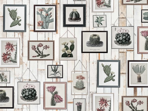 Wall Mural R15322 Cactus Wall Art, Faded image 1 by Rebel Walls
