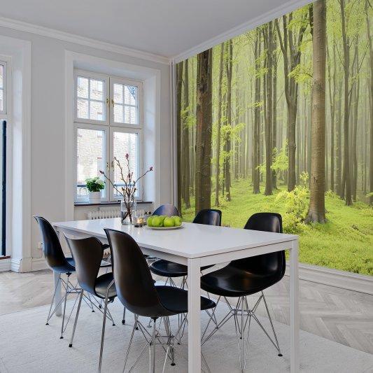 Tapete R10101 Deciduous Forest Bild 1 von Rebel Walls