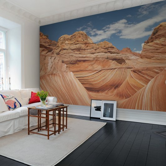 Wall Mural R11701 Arizona image 1 by Rebel Walls