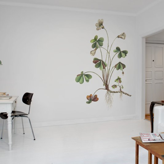 Wall Mural R11961 Oxalis image 1 by Rebel Walls
