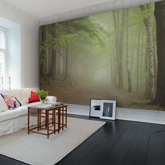 Wall Mural R12471 Forest Path image 1 by Rebel Walls