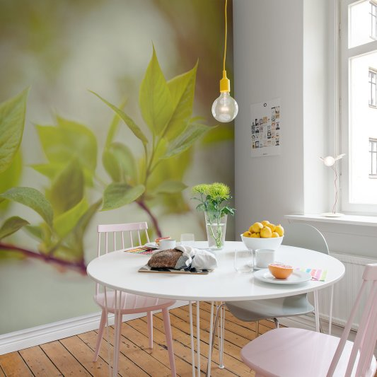 Wall Mural R13661 Green Leaves image 1 by Rebel Walls