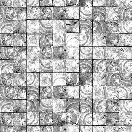Tapete R14241 Age Rings Bild 1 von Rebel Walls