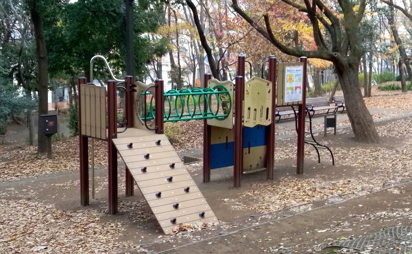 林試の森公園_1