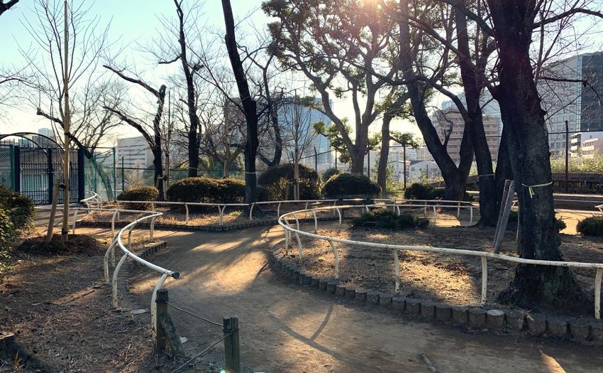 権現山公園_1