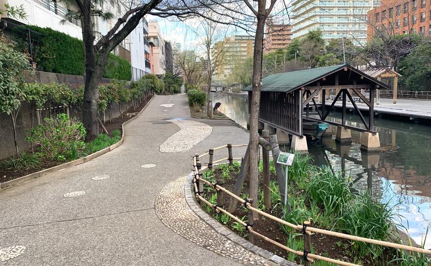 木場親水公園_1