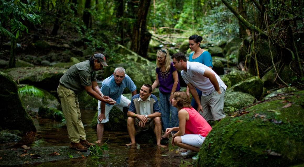 Mossman Gorge and Daintree Walkabout Tour