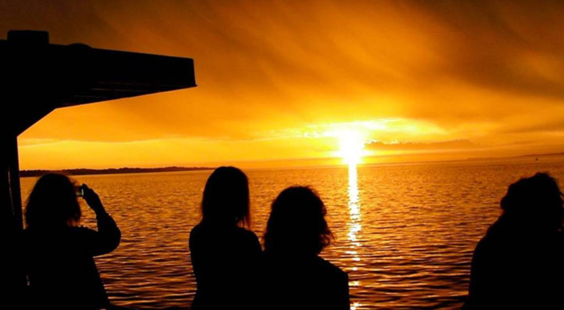 Twilight Cruise of Phillip Island