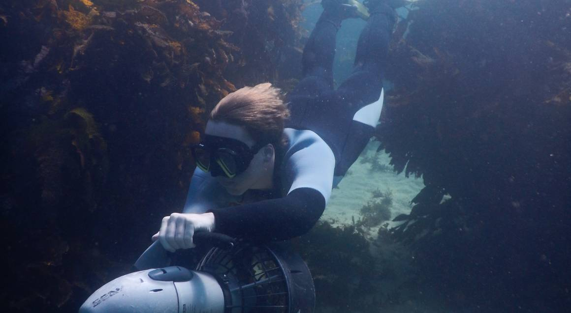 Sydney Underwater Scooter Tour