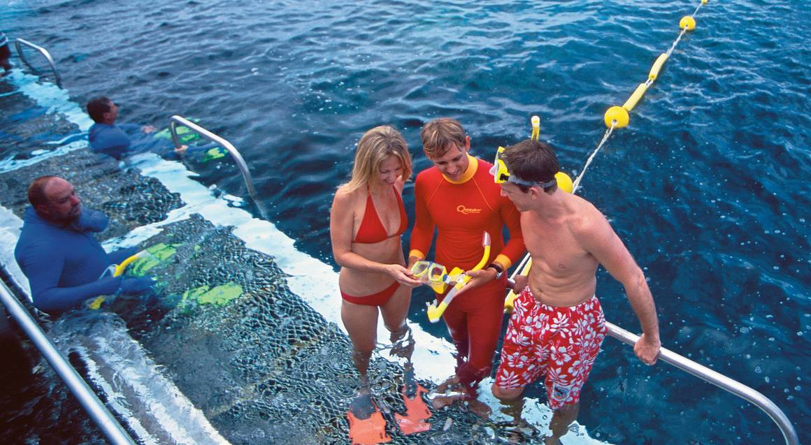 Outer Barrier Reef Cruise, Snorkel and Lunch