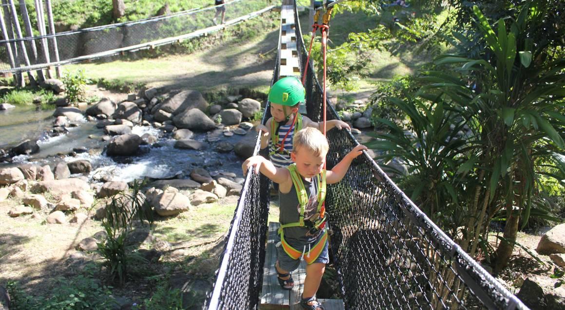 Junior's High Rope and Zipline Adventure - Tamborine