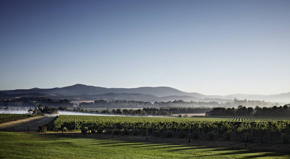 Private Wine Tour, 2 Course Lunch and Spa Massage - For 2