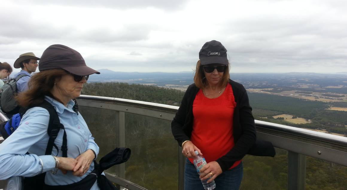 Climb, Wine, Dine and Rewind Tour