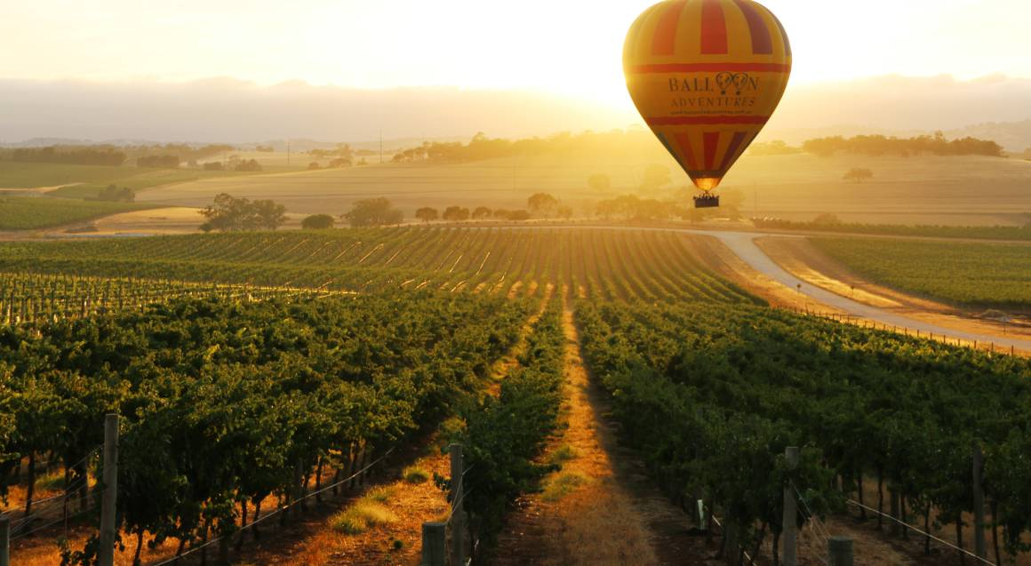 Hot Air Balloon Flight over Barossa Valley with Breakfast