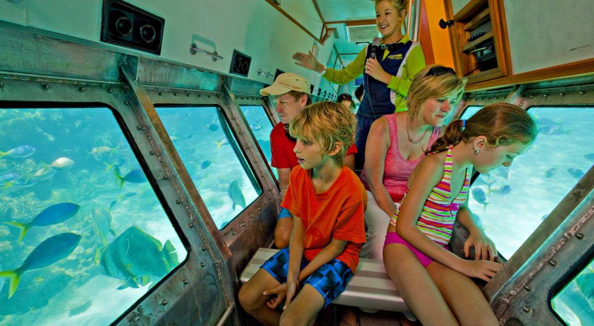 Cruise To Green Island with Submarine and Lunch - Family