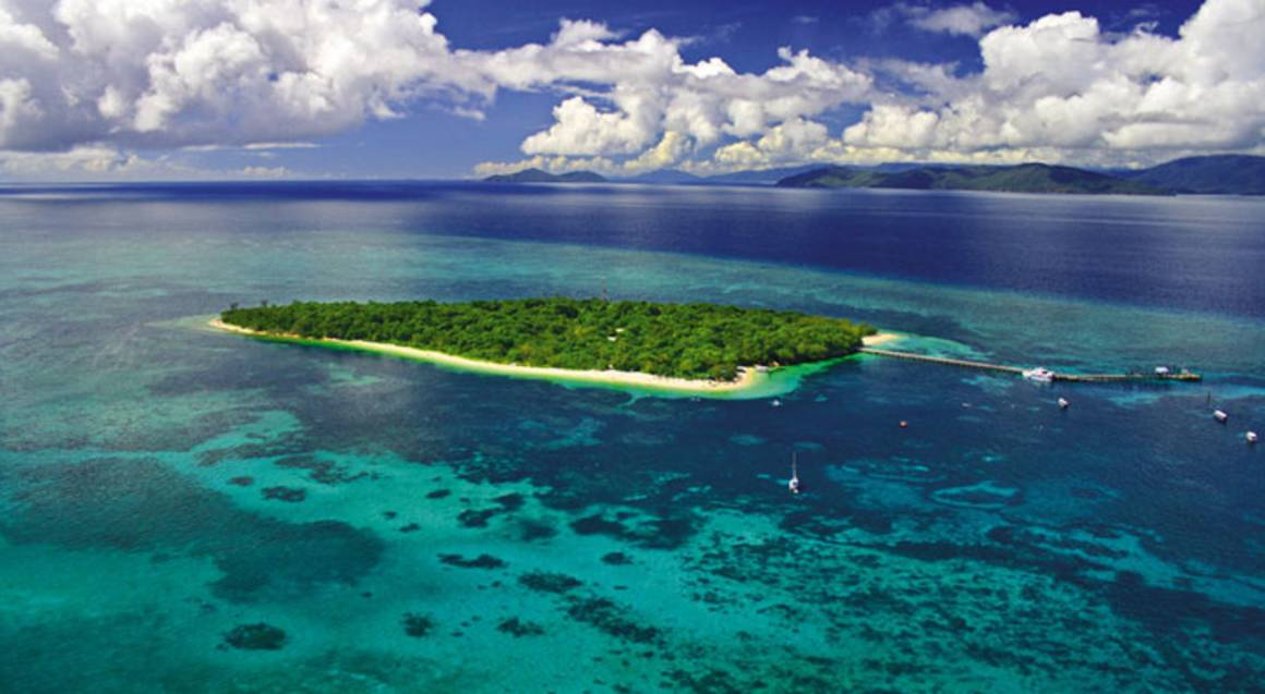 Green Island Reef Explorer Cruise with Lunch - Family