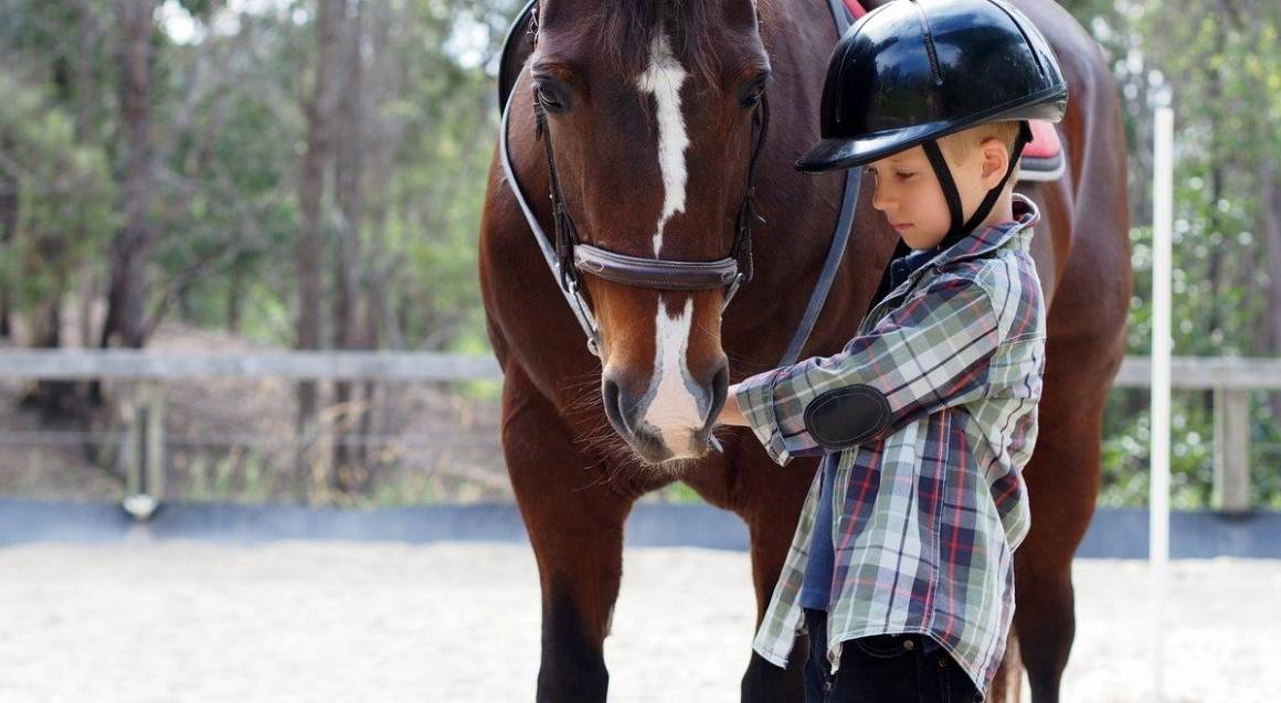 Gold Coast Hinterland Horse Connection Lesson - For 4