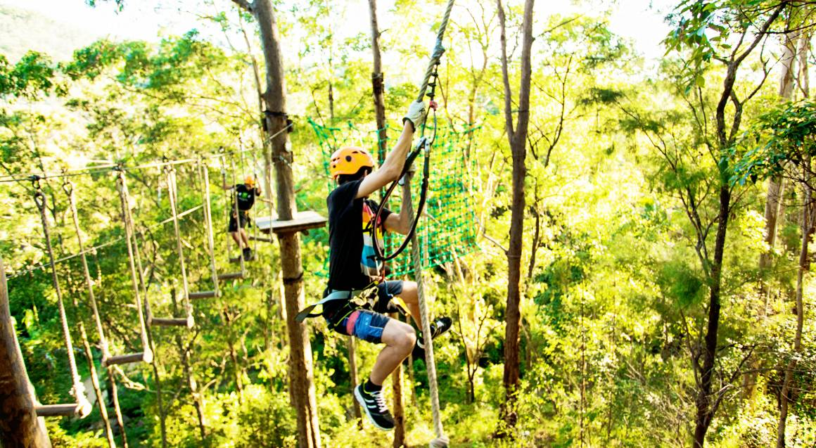 High Ropes and Flying Fox Adventure - Tamborine