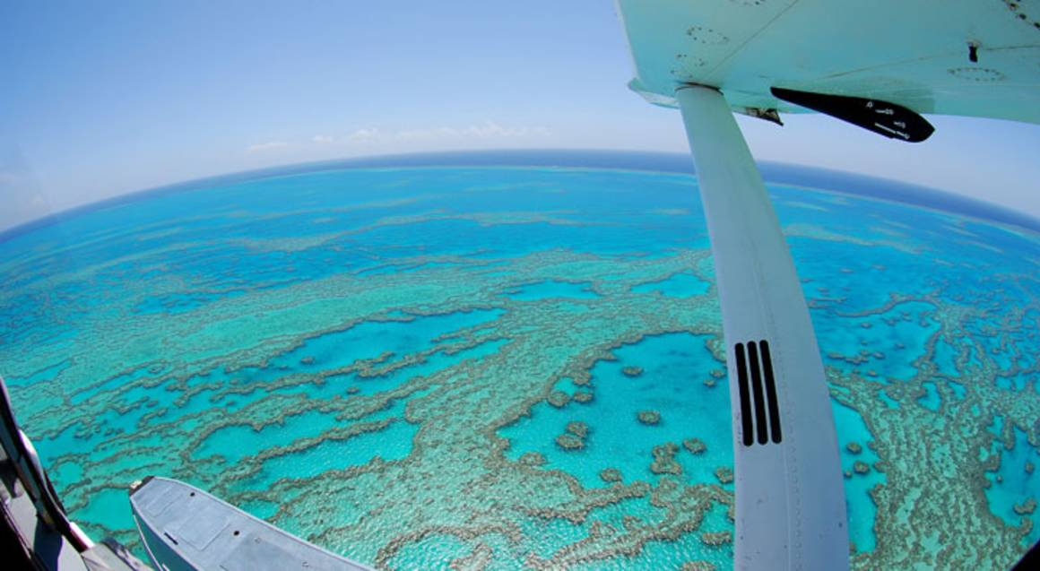 Seaplane Flight over Great Barrier Reef and Whitehaven Beach