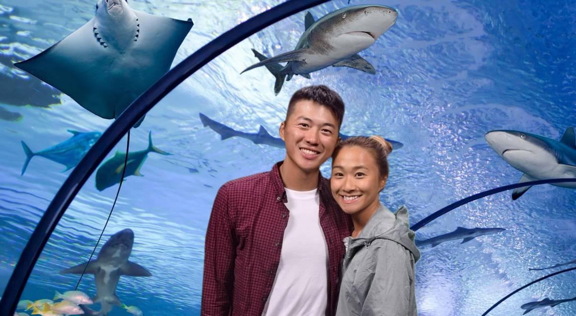 Cairns Aquarium Entry with Professional Photograph