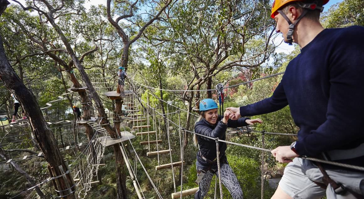 child and man on a treetops rope course