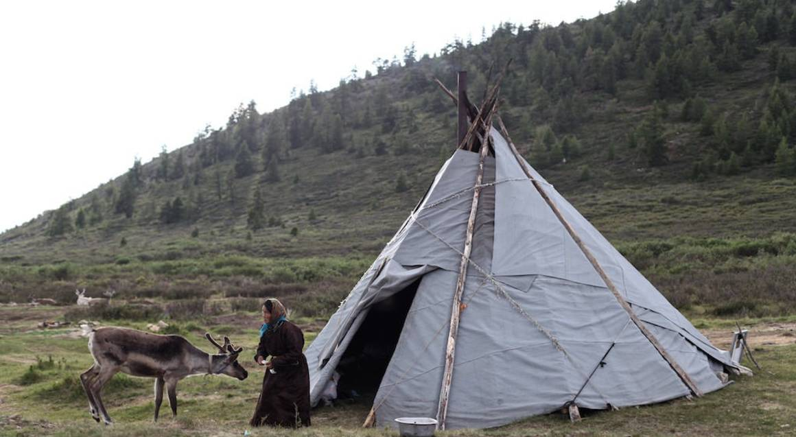 Travel with the Reindeer Tribes of Mongolia - 9 Nights