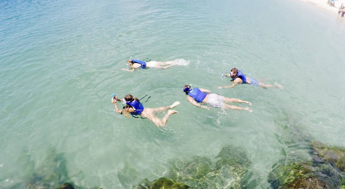 Kayaking with Dolphins and Snorkeling Tour